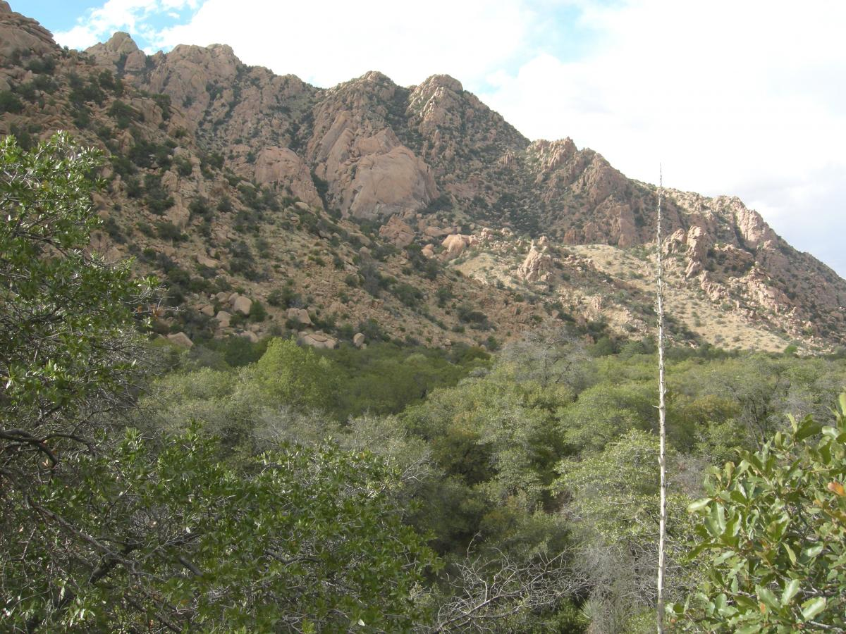 Cochise Stronghold, Dragoon Mountains, southeastern Arizona.