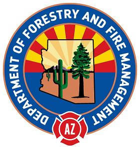 DFFM Logo