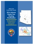 2016 AZ STPP Report cover page
