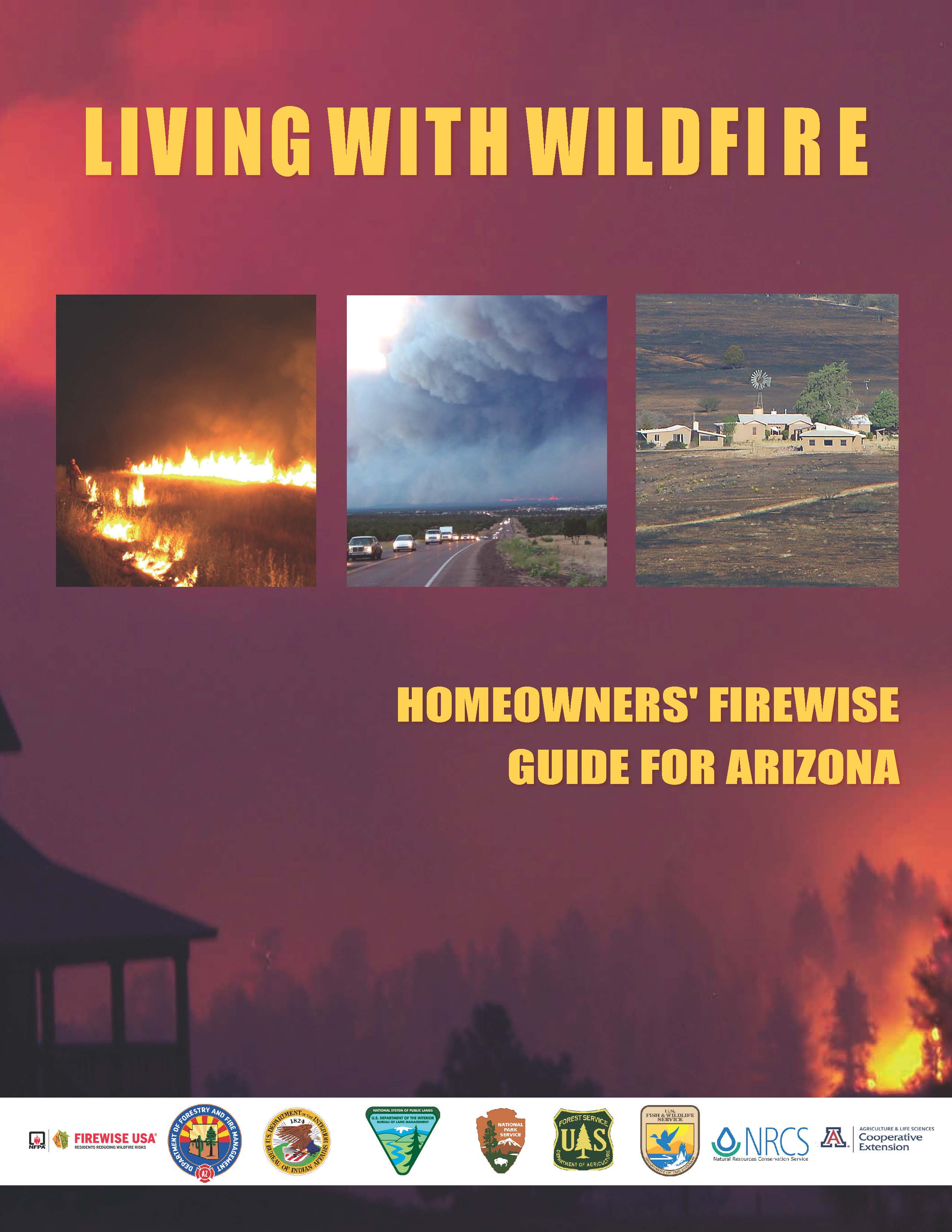Living with Wildfire - Icon